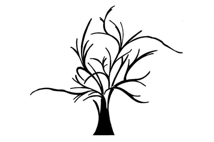 un-albero-in-casa